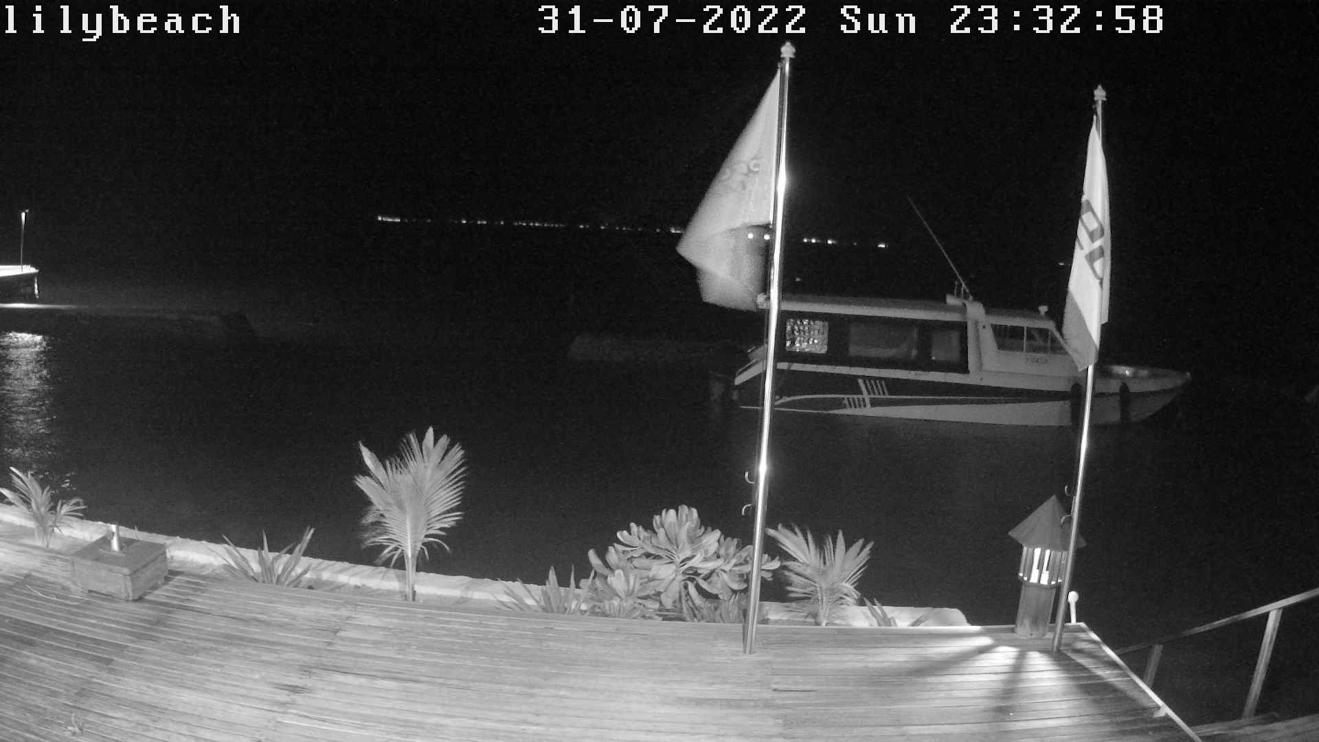 Lily Beach Webcam